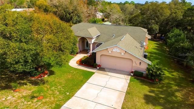 8402 Nightingale Road, Weeki Wachee, FL 34613 (MLS #W7820704) :: GO Realty
