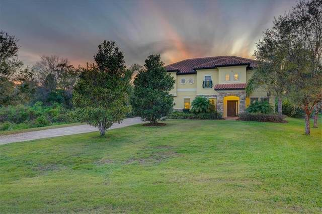 17822 Crystal Preserve Drive, Lutz, FL 33548 (MLS #W7820730) :: Griffin Group