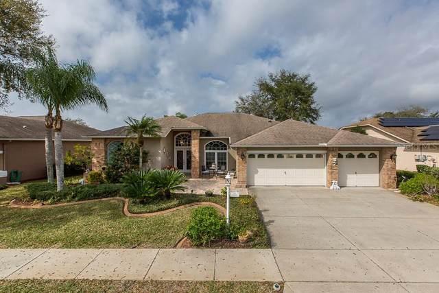 1243 Rambling Vine Court, Trinity, FL 34655 (MLS #W7820733) :: Griffin Group