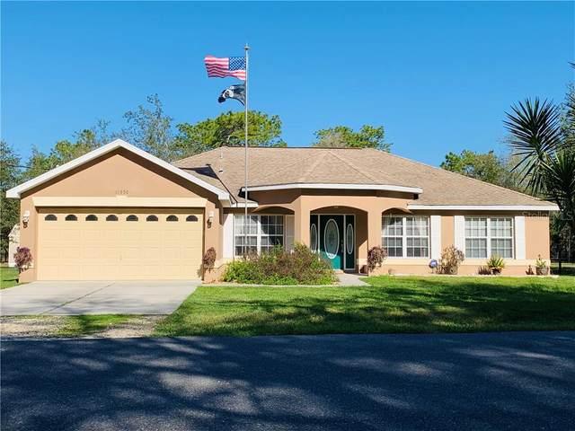 11950 Osprey Avenue, Weeki Wachee, FL 34614 (MLS #W7820763) :: Griffin Group