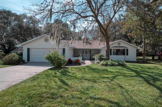7225 Royal Oak Drive, Spring Hill, FL 34607 (MLS #W7820776) :: Keller Williams on the Water/Sarasota