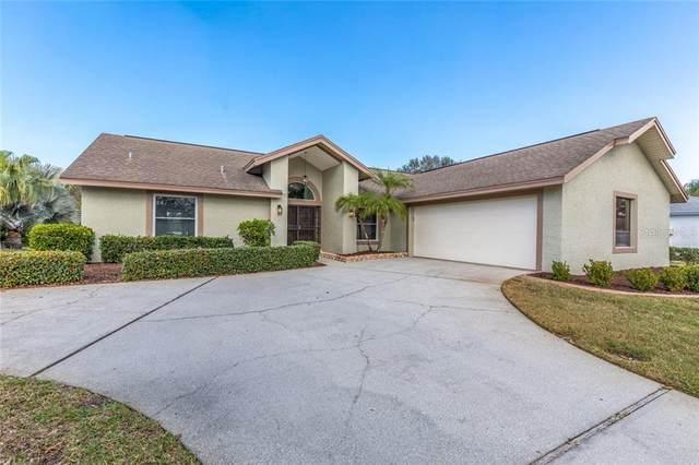 2811 Windridge Drive, Holiday, FL 34691 (MLS #W7820783) :: Armel Real Estate