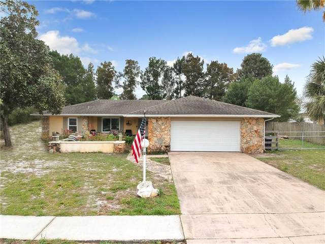 9124 Sewell Lane, Spring Hill, FL 34608 (MLS #W7820876) :: GO Realty