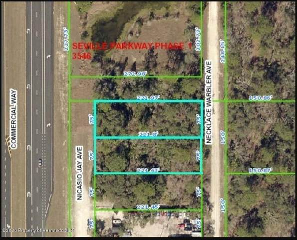 Nicasio Jay Avenue, Weeki Wachee, FL 34614 (MLS #W7820896) :: Griffin Group