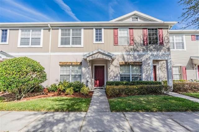 16235 Swan View Circle, Odessa, FL 33556 (MLS #W7820939) :: Baird Realty Group