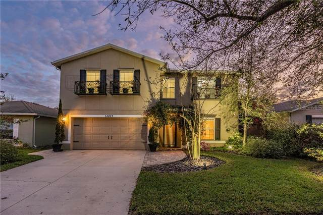14022 Noble Park Drive, Odessa, FL 33556 (MLS #W7820962) :: Baird Realty Group
