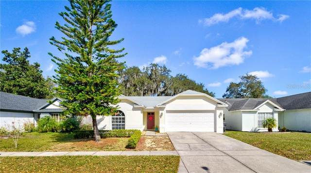 1202 Bloom Hill Avenue, Valrico, FL 33596 (MLS #W7820980) :: Dalton Wade Real Estate Group