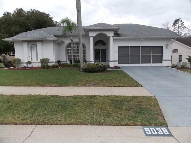 9038 Irondale Lane, Hudson, FL 34667 (MLS #W7820987) :: The Duncan Duo Team