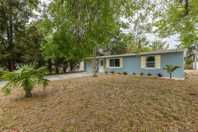 6201 Indiana Avenue, New Port Richey, FL 34653 (MLS #W7821008) :: Griffin Group