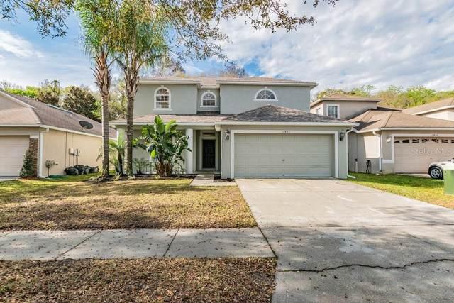 15834 Cedar Elm Terrace, Land O Lakes, FL 34638 (MLS #W7821018) :: Baird Realty Group