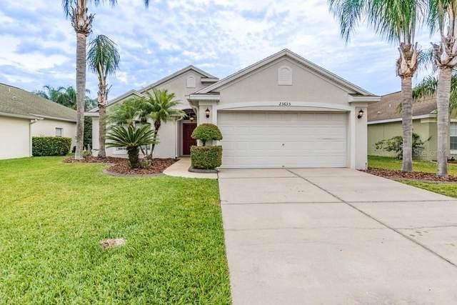 23635 Estero Court, Land O Lakes, FL 34639 (MLS #W7821020) :: Baird Realty Group