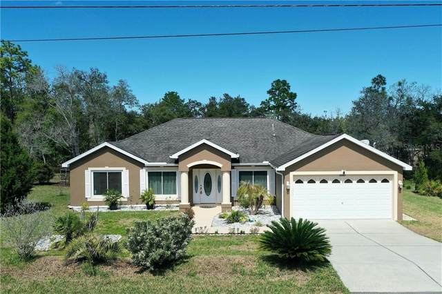 12185 Peregrine Falcon Avenue, Weeki Wachee, FL 34614 (MLS #W7821041) :: Griffin Group