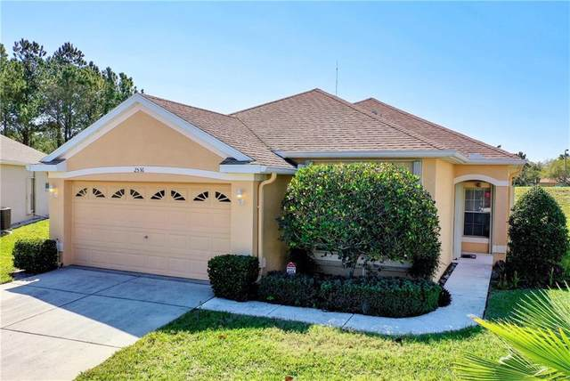 2536 Sandy Hill Court, Holiday, FL 34691 (MLS #W7821050) :: Griffin Group