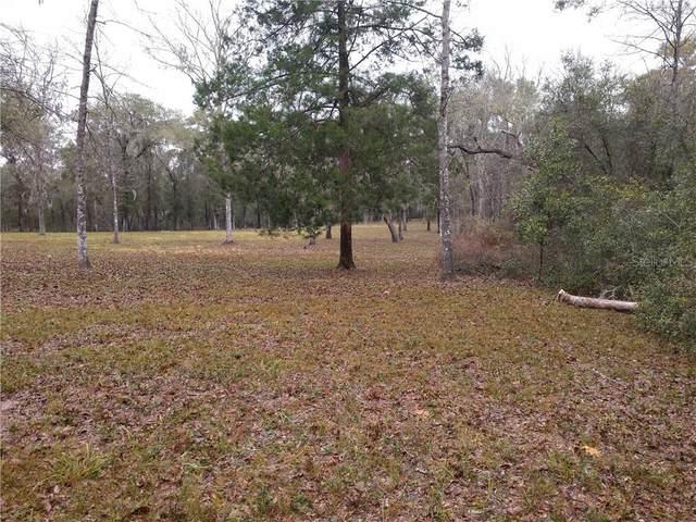 Cherokee Road, Brooksville, FL 34601 (MLS #W7821115) :: Premier Home Experts