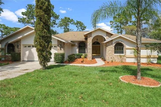 6305 Penna Street, Spring Hill, FL 34609 (MLS #W7821414) :: Homepride Realty Services