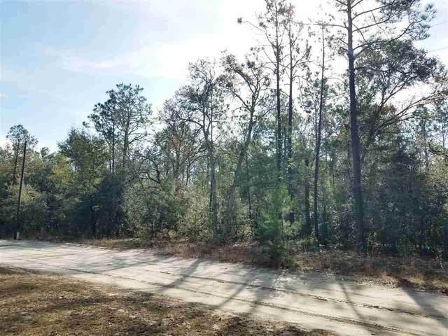 SE Burnside Road, lee, FL 32059 (MLS #W7821416) :: Rabell Realty Group