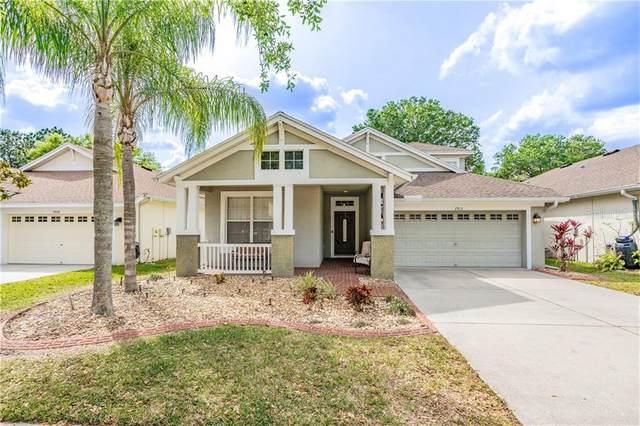7913 Grasmere Drive, Land O Lakes, FL 34637 (MLS #W7821548) :: Cartwright Realty