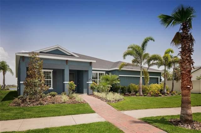 11761 Lake Lucaya Drive, Riverview, FL 33579 (MLS #W7821635) :: Lovitch Group, Keller Williams Realty South Shore