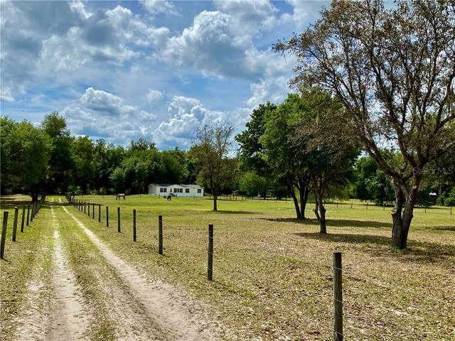 967 Cr 753S, Webster, FL 33597 (MLS #W7821811) :: Premium Properties Real Estate Services