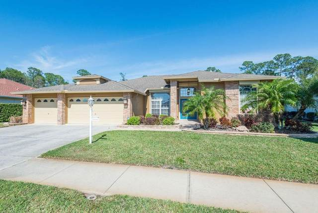 1553 Winding Willow Drive, Trinity, FL 34655 (MLS #W7821897) :: Team Borham at Keller Williams Realty