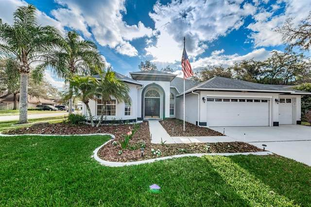 8511 Basuto Drive, Trinity, FL 34655 (MLS #W7821901) :: Lock & Key Realty