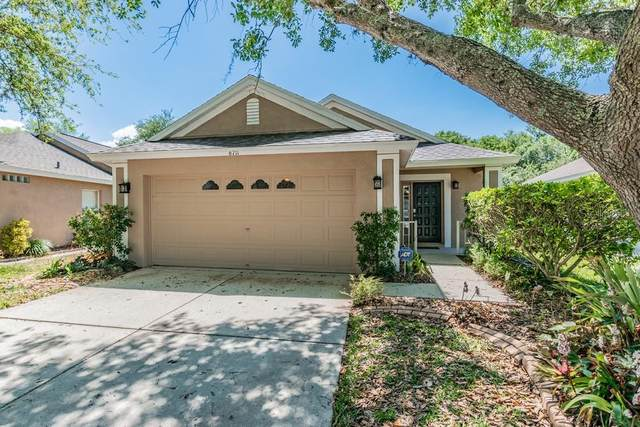 6711 Summer Cove Drive, Riverview, FL 33578 (MLS #W7821947) :: The Duncan Duo Team