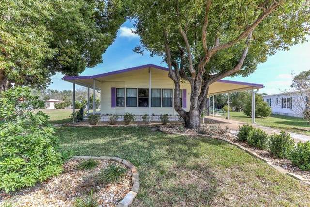 9268 Salvini Drive, Brooksville, FL 34613 (MLS #W7821949) :: Young Real Estate