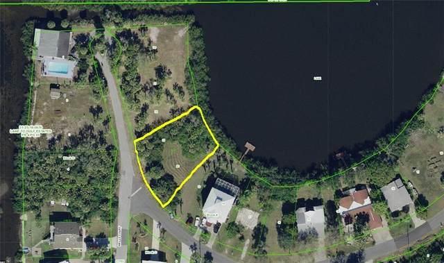 Deidre Circle, Port Richey, FL 34668 (MLS #W7821952) :: Team Bohannon Keller Williams, Tampa Properties