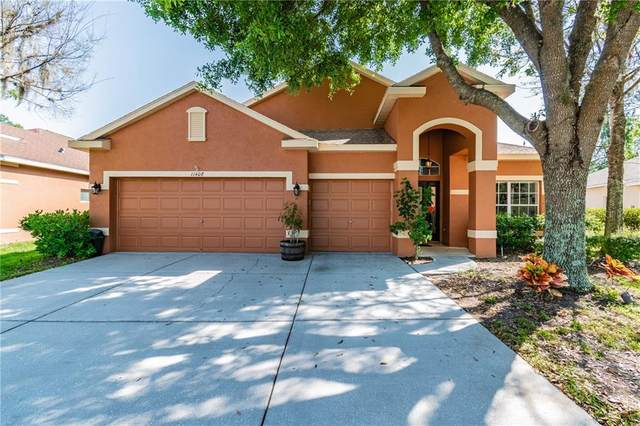 11408 Crisfield Place, New Port Richey, FL 34654 (MLS #W7821982) :: Team Bohannon Keller Williams, Tampa Properties