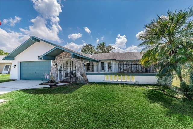 8150 Damara Drive, New Port Richey, FL 34653 (MLS #W7821995) :: GO Realty