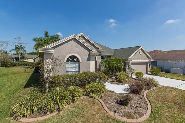9807 Balsaridge Court, Trinity, FL 34655 (MLS #W7822031) :: Lock & Key Realty