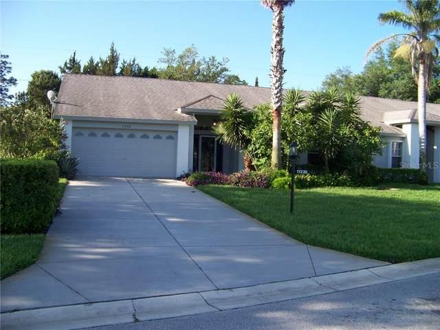 11220 SW Hollander Avenue, Hudson, FL 34667 (MLS #W7822037) :: Burwell Real Estate