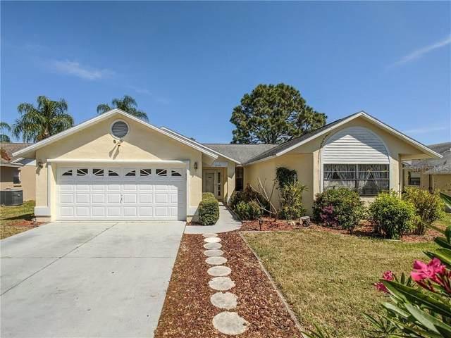 8445 Royal Hart Drive, New Port Richey, FL 34653 (MLS #W7822046) :: Armel Real Estate