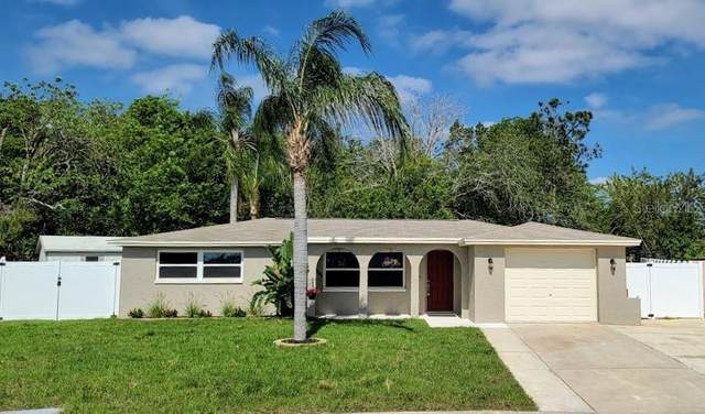 3801 Woodcock Drive, New Port Richey, FL 34652 (MLS #W7822057) :: Team Borham at Keller Williams Realty