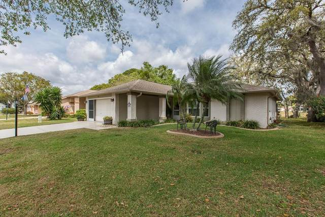 9903 Kingsport Avenue, New Port Richey, FL 34655 (MLS #W7822059) :: Premier Home Experts