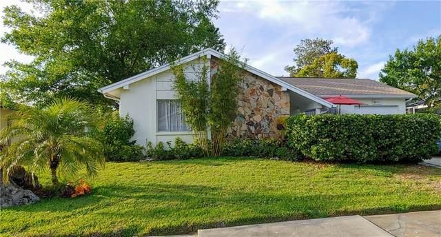 8605 Sagewood Drive, Hudson, FL 34667 (MLS #W7822073) :: Sarasota Home Specialists