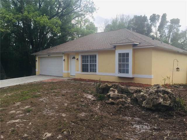 3911 Fan Palm Court, Land O Lakes, FL 34638 (MLS #W7822116) :: Team Bohannon Keller Williams, Tampa Properties