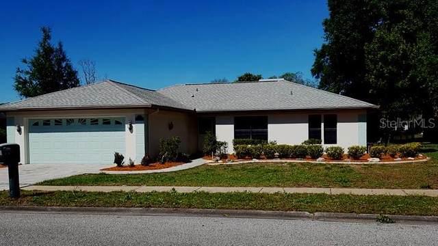 8738 Braxton Drive, Hudson, FL 34667 (MLS #W7822127) :: Your Florida House Team