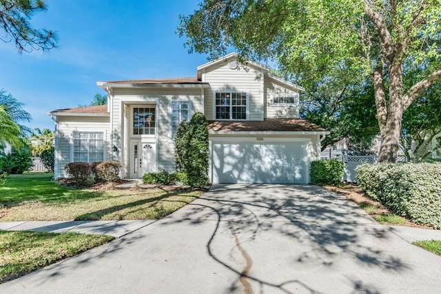 9206 Jubilee Court, Tampa, FL 33647 (MLS #W7822155) :: Team Bohannon Keller Williams, Tampa Properties