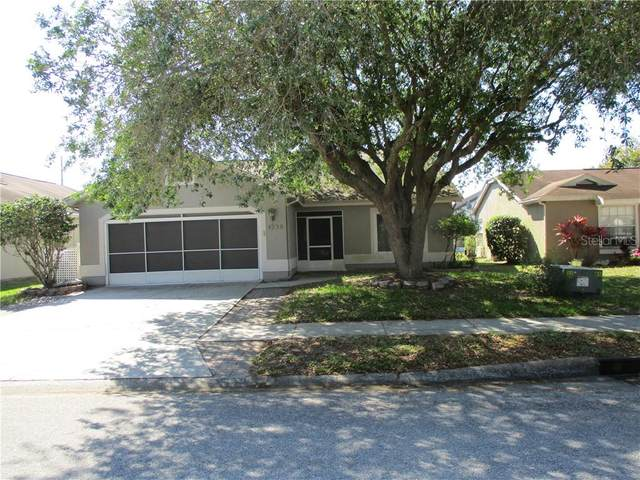 Address Not Published, New Port Richey, FL 34653 (MLS #W7822159) :: Carmena and Associates Realty Group
