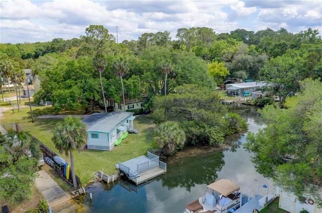 6130 Island Drive, Weeki Wachee, FL 34607 (MLS #W7822191) :: EXIT King Realty