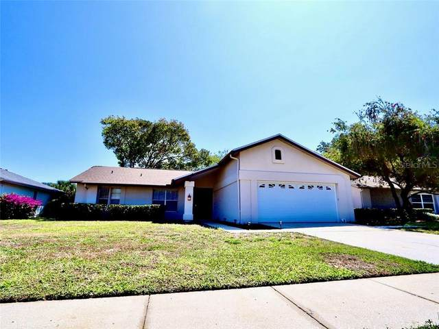 3612 Hogan Drive, New Port Richey, FL 34655 (MLS #W7822195) :: Delgado Home Team at Keller Williams