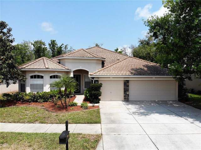 11533 Belle Haven Drive, New Port Richey, FL 34654 (MLS #W7822208) :: Keller Williams Realty Peace River Partners