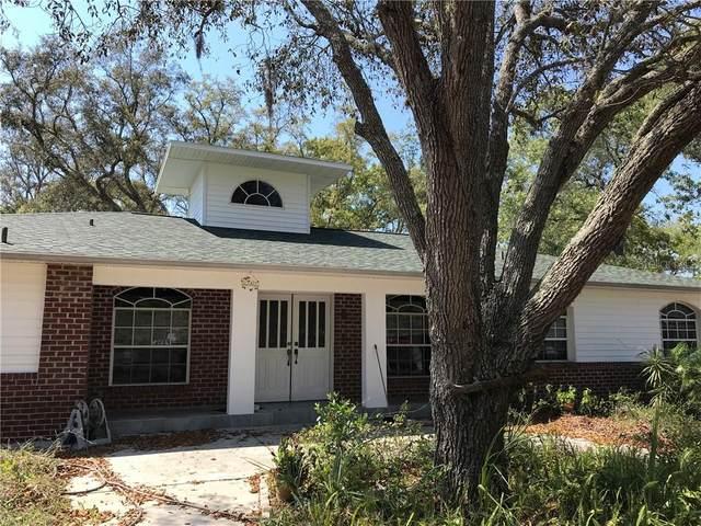 18707 East Road, Hudson, FL 34667 (MLS #W7822247) :: Your Florida House Team