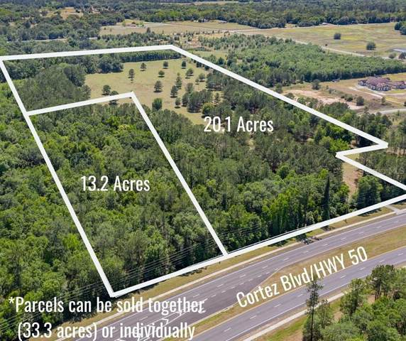 Address Not Published, Brooksville, FL 34601 (MLS #W7822286) :: Keller Williams Realty Peace River Partners