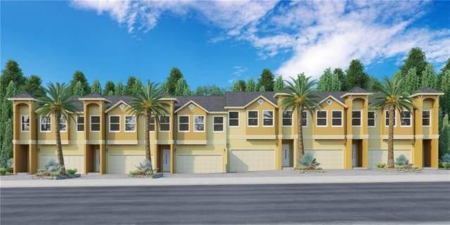 745 Grand Cypress Lane, Tarpon Springs, FL 34689 (MLS #W7822560) :: The Duncan Duo Team