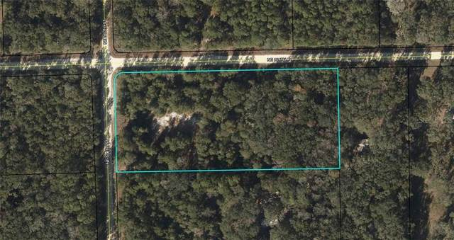 75 NE 508TH Street, Old Town, FL 32680 (MLS #W7822681) :: Carmena and Associates Realty Group