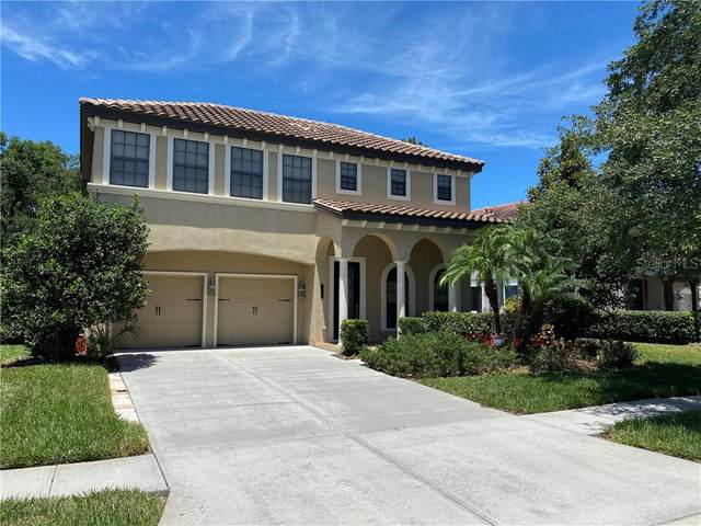 20314 Chestnut Grove Drive, Tampa, FL 33647 (MLS #W7822971) :: Carmena and Associates Realty Group