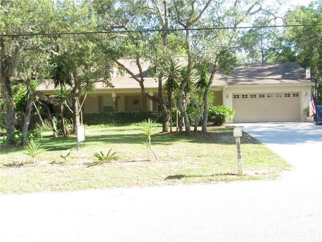 8990 Long Lake Avenue, Weeki Wachee, FL 34613 (MLS #W7823004) :: Griffin Group