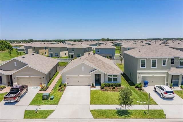 30937 Summer Sun Loop, Wesley Chapel, FL 33545 (MLS #W7823062) :: Team Bohannon Keller Williams, Tampa Properties